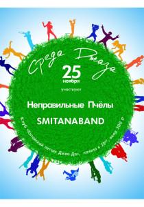 25_nov_Site